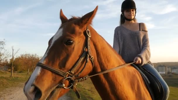 Young woman riding a horse in the countryside. Equestrian sport