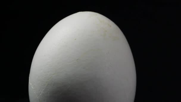 geschlungene Bewegung Ei auf schwarzem Hintergrund