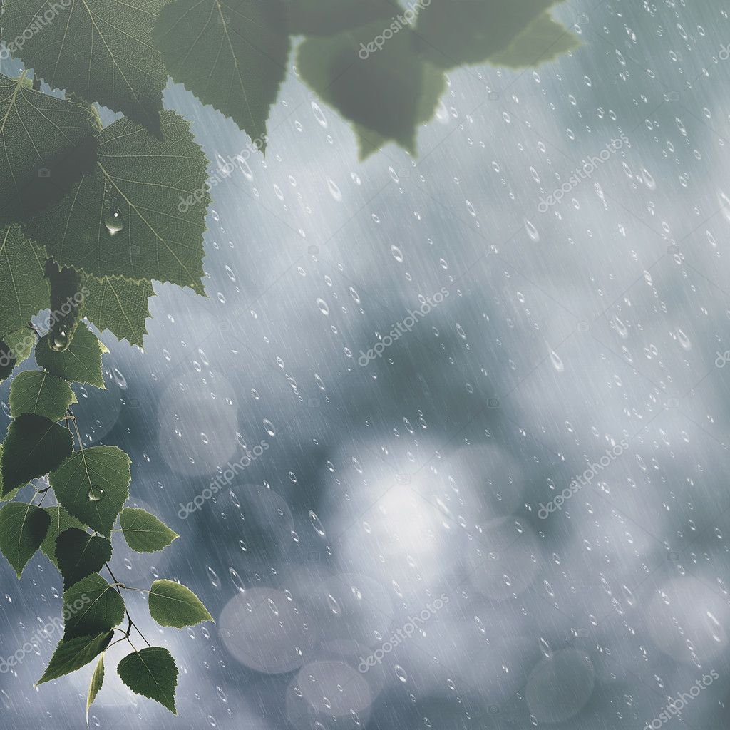 Summer rain background