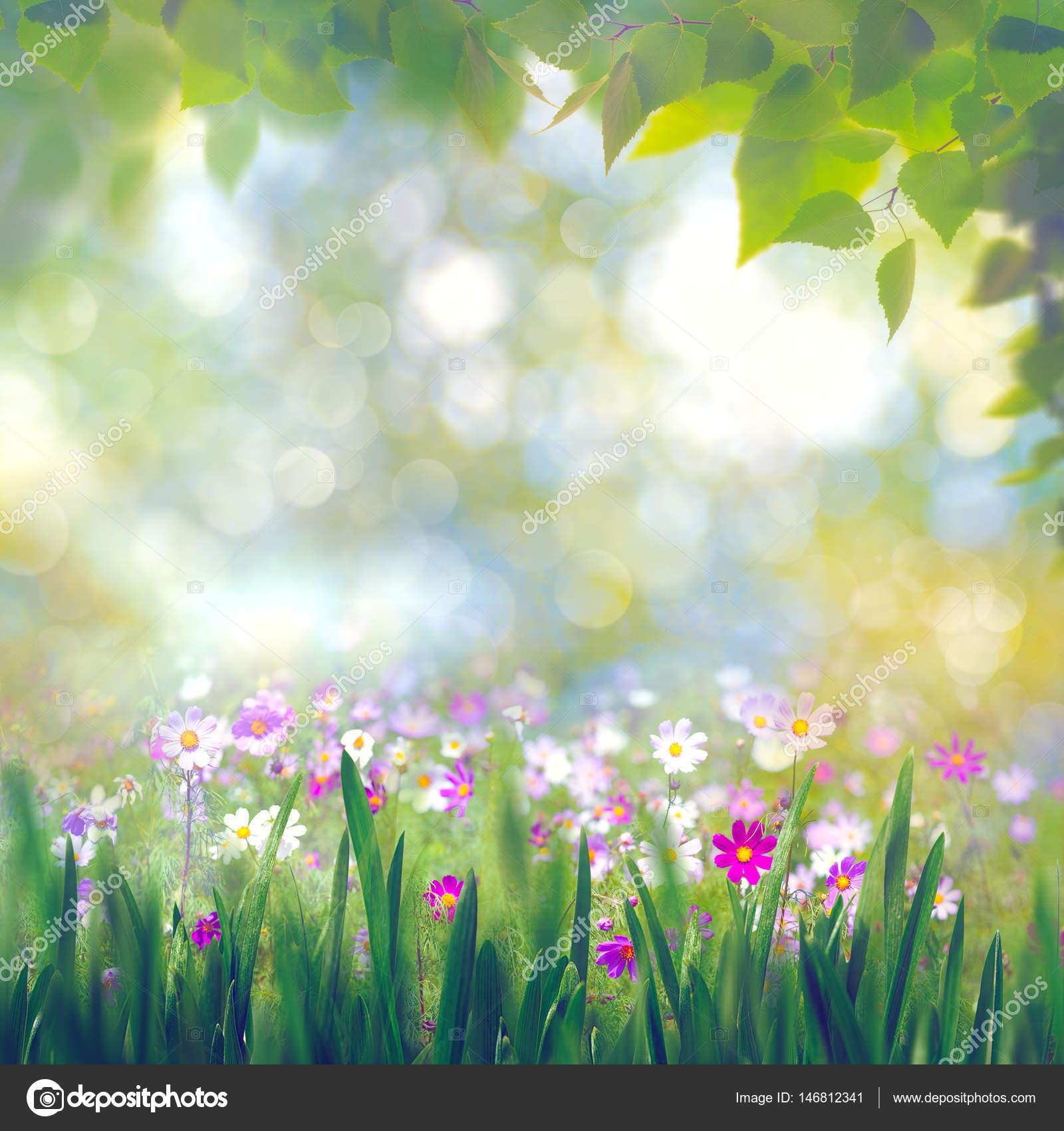 blühenden Blumen und Blätter — Stockfoto © tolokonov #146812341