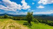 Karpaty krajina