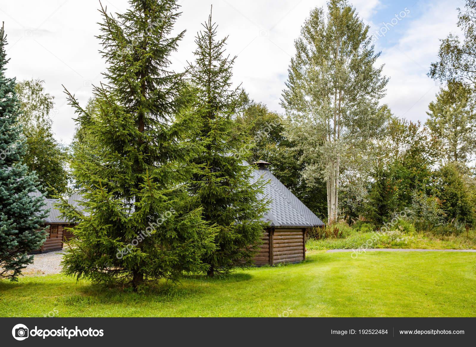 Paisaje Con Cabanas Madera Arboles Noruega Fotos De Stock - Cabaas-de-madera-en-arboles