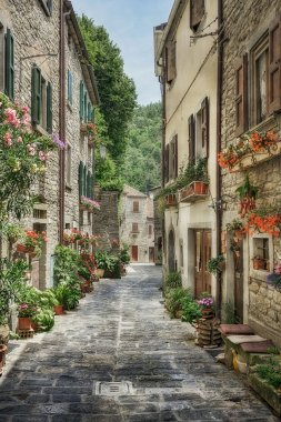 Narrow street with flowers in old Italian village stock vector