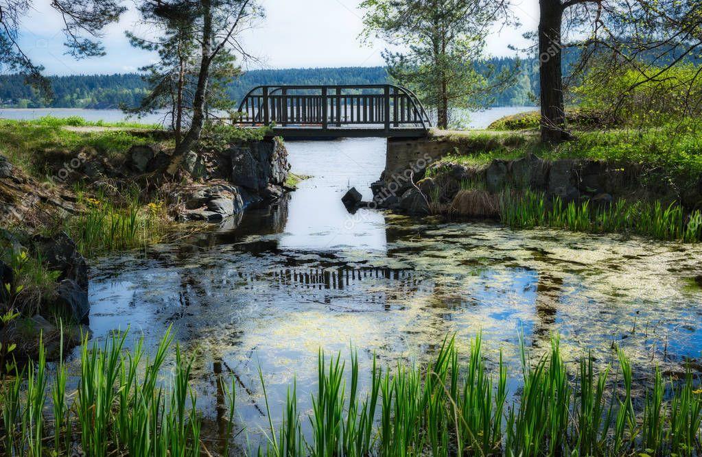 bridge in park on shore of lake