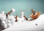 ants ride sledge and play snowballs on Christmas or New Year in winter