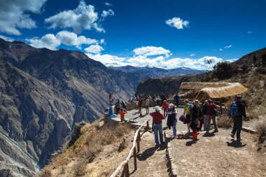 tourists watching condors in the Colca Canyon