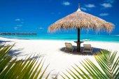 Fotografie nádherná pláž na Maledivy