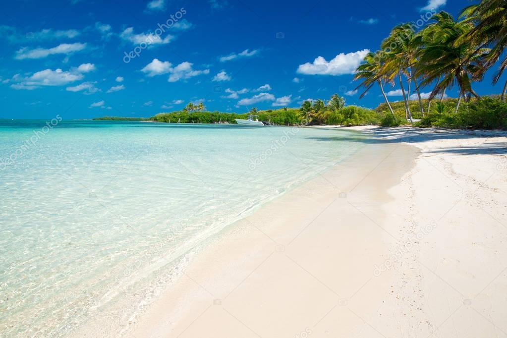tropical sea view