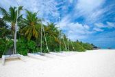 Fotografie Tropická pláž v Maledivy