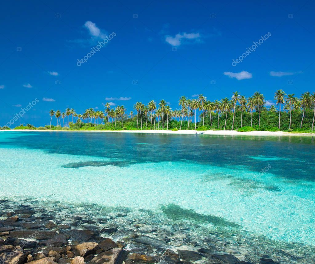 Tropical beach with clean sea and blue sky