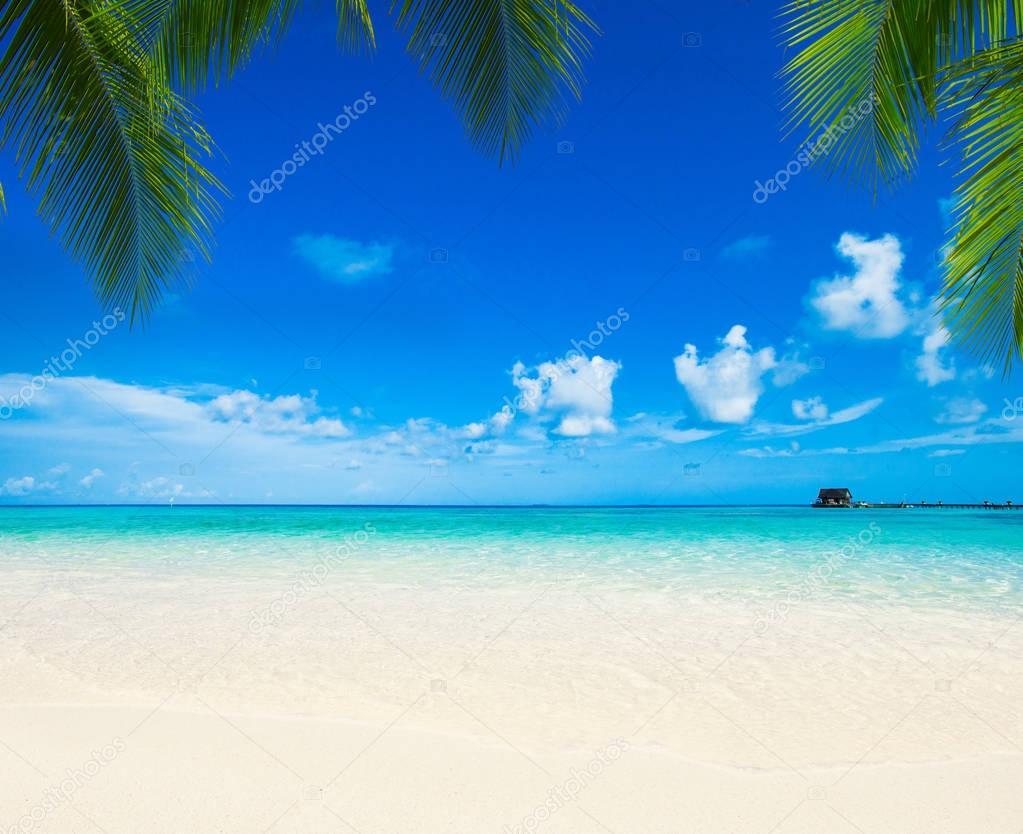 Beautiful tropical Maldives island landscape