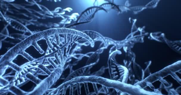 DNA structure biochemistry molecule on blue background. 4k 8k video