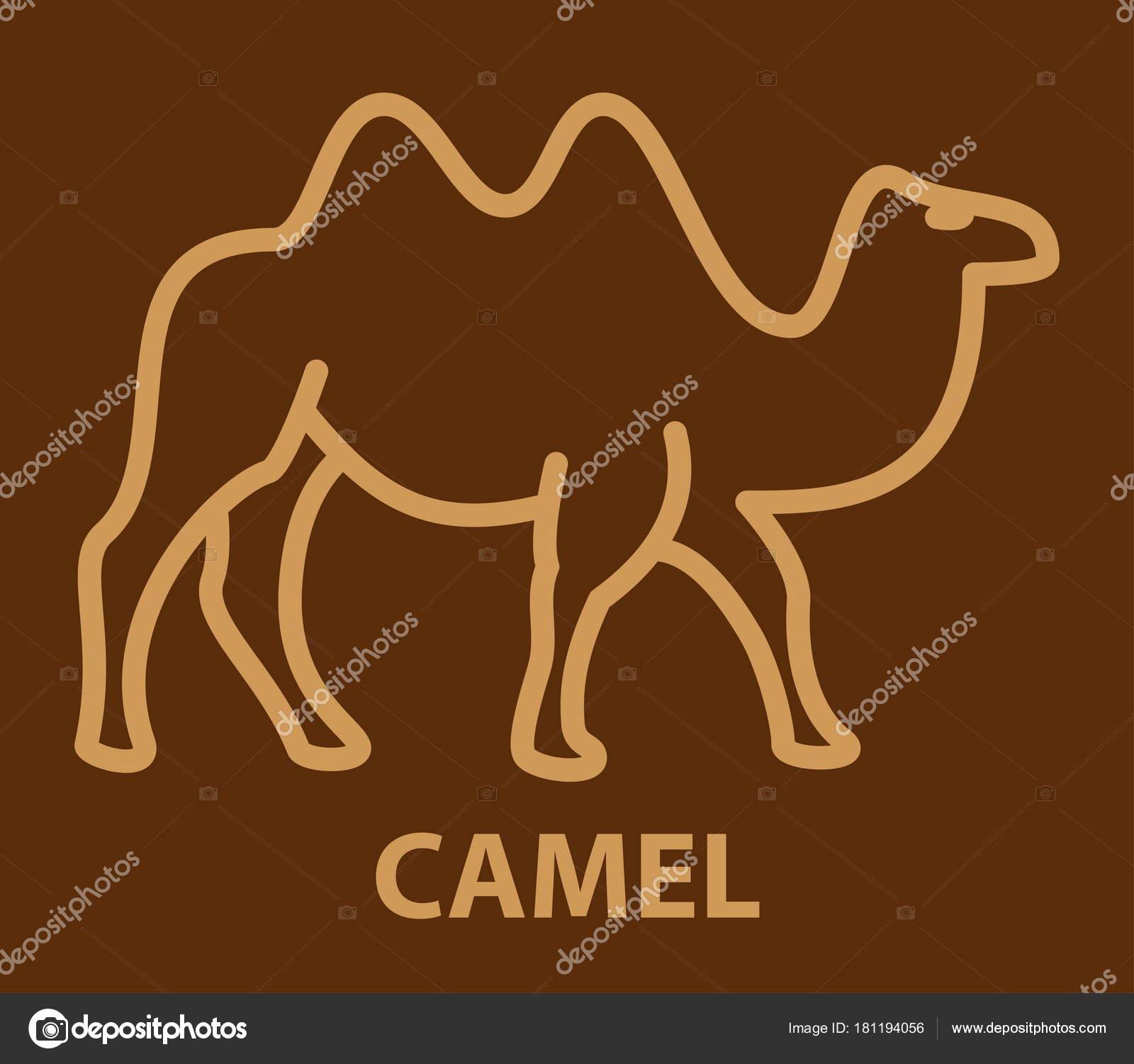 Icono de camello en estilo lineal — Archivo Imágenes Vectoriales ...