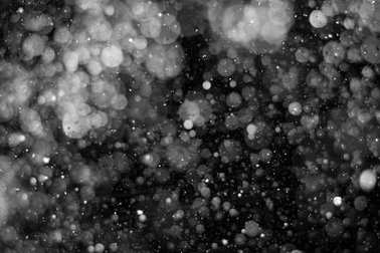 Falling snow on black background.