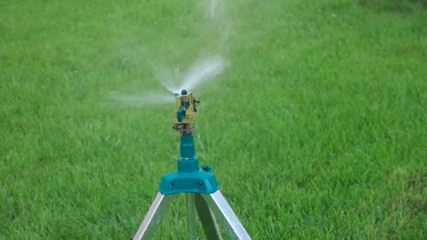 Head Of Garden Sprinkler Working Copy Space On Green Grass