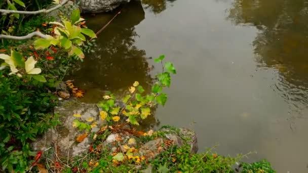 Podzimní krajina vodu Lol Copyspace. Malebné jezero stále vodní hladiny. Filmovou charakter období klidu koncept