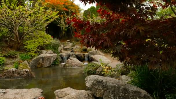 Rybník s malým vodopádem v japonské zahradě, zaměření na popředí