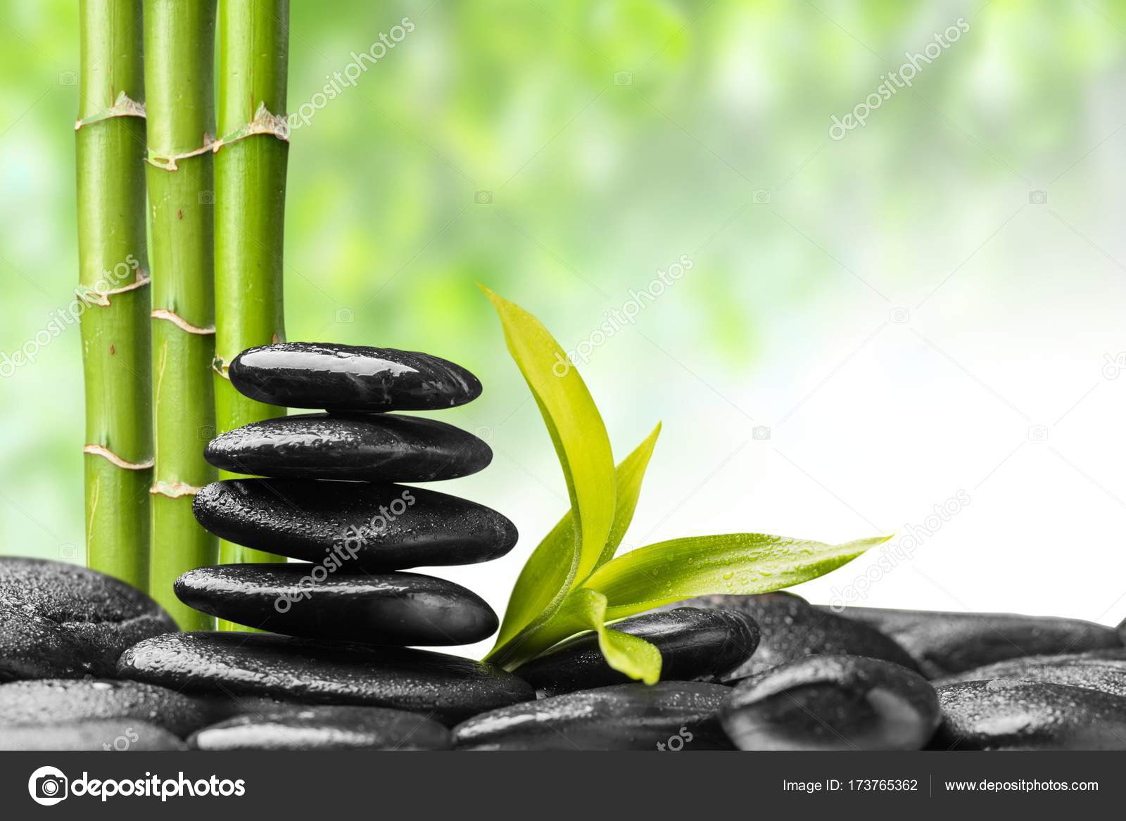 Zen Steine Und Bambus Auf Der Weissen Stockfoto C Scorpp 173765362