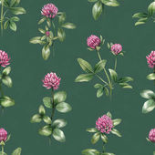 Watercolor illustrations of clover flowers. Seamless pattern