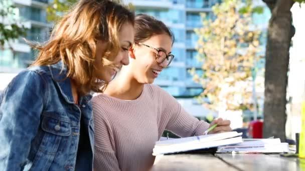 Girls studying together at park
