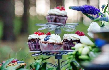 Delicious berry cupcakes