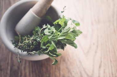 fresh herbs in  mortar