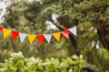 colorful flags in garden