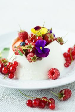 creamy dessert with berries