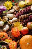 autumn harvest, vegetables.