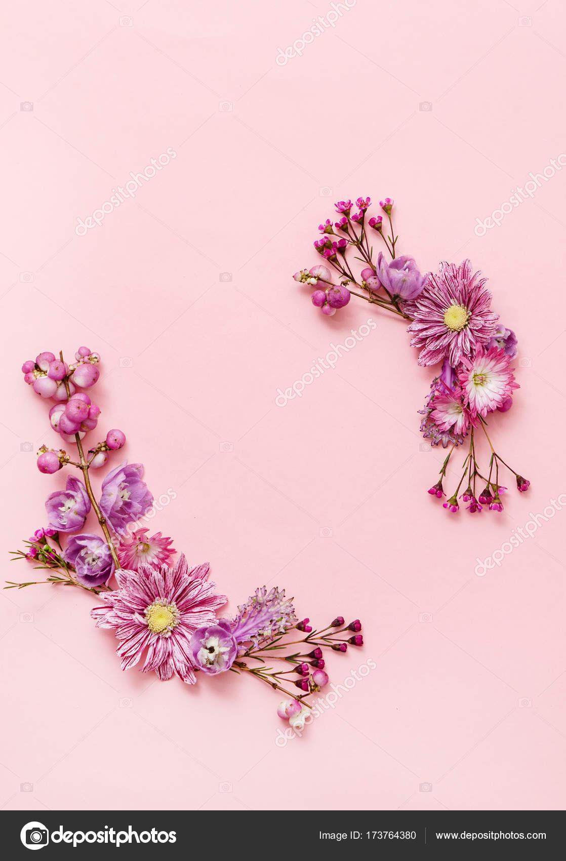 Foto Fiori Su Rosa Fiori Su Sfondo Rosa Foto Stock Shebeko