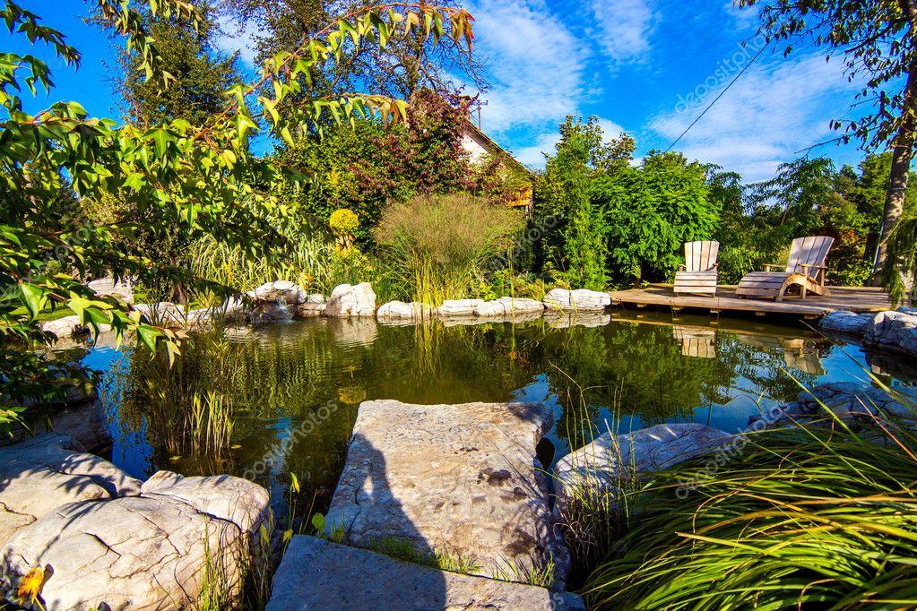 Pond in beautiful garden