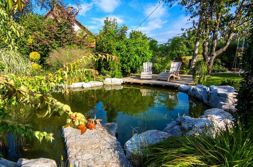 deckchairs near pond in green blooming garden