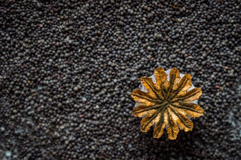 Dried poppy seeds background, top view