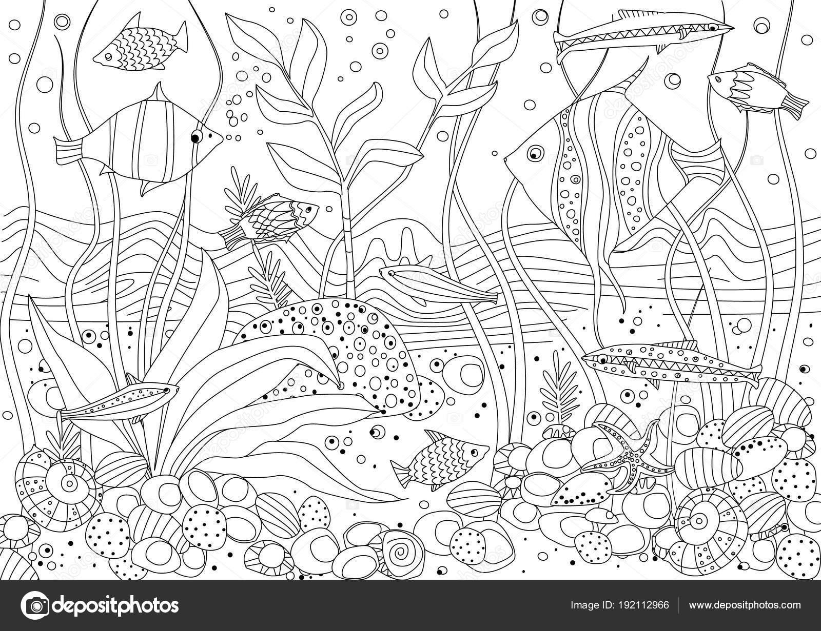 Vektör çizim Tasarım Boyama Kitabı Için Deniz Yosunu Rock Taşlarla