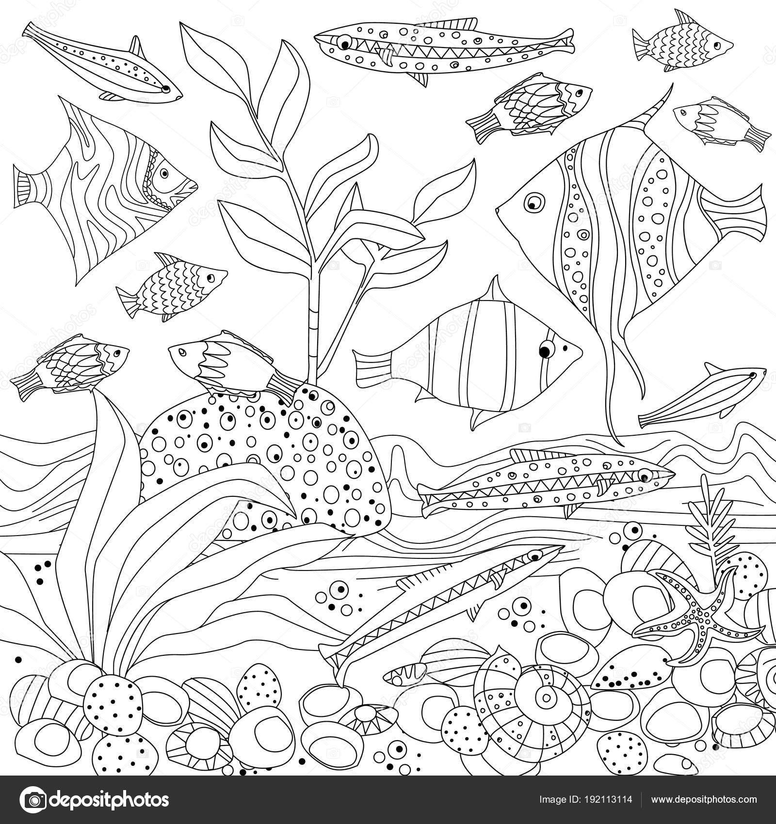 装飾的な魚と海藻 塗り絵用のベクター イラスト デザイン ストック