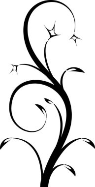 Blossom floral branch