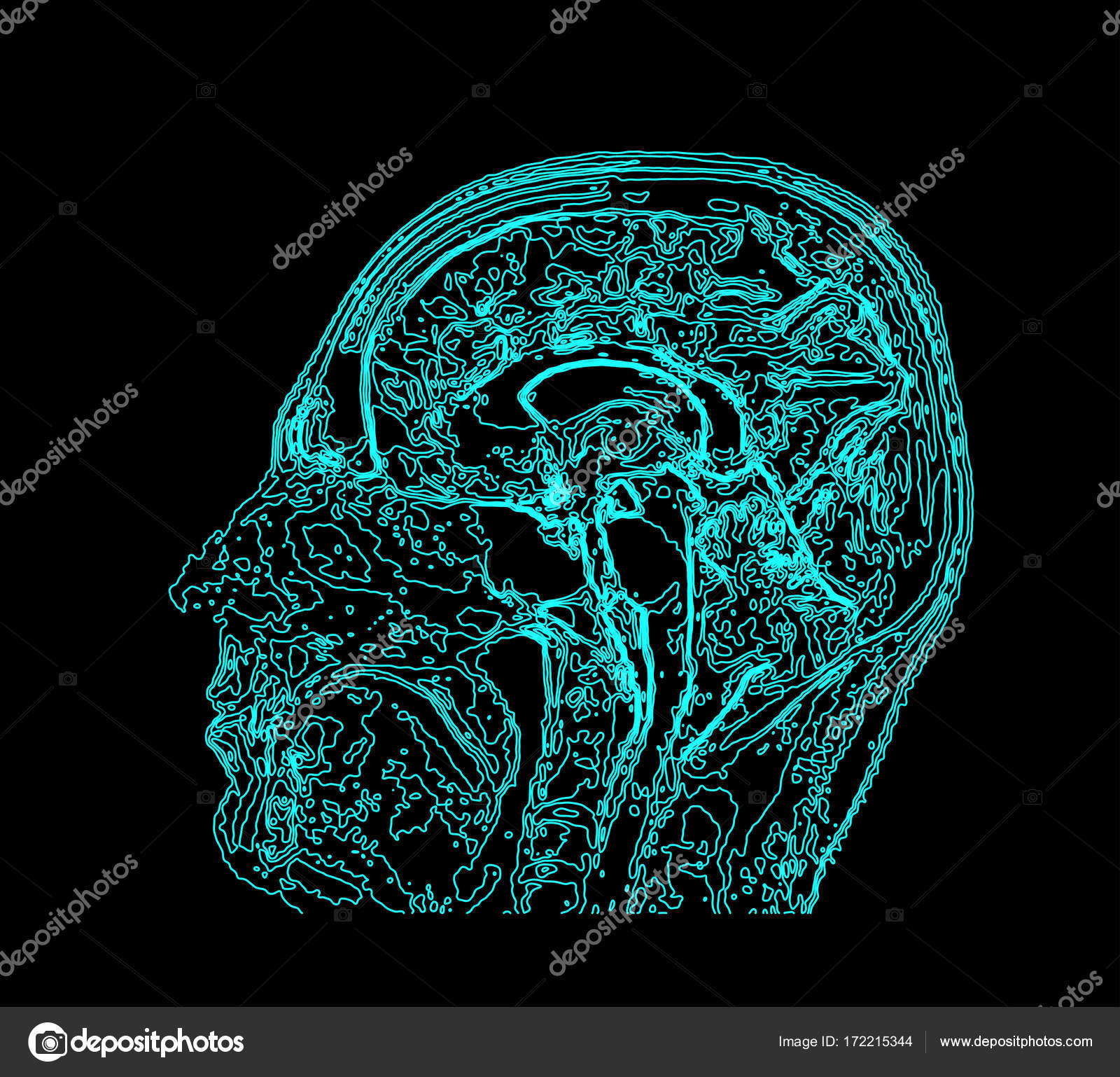 Topographic map mri of the human brain stock vector mpavlov topographic map mri of the human brain stock vector ccuart Image collections