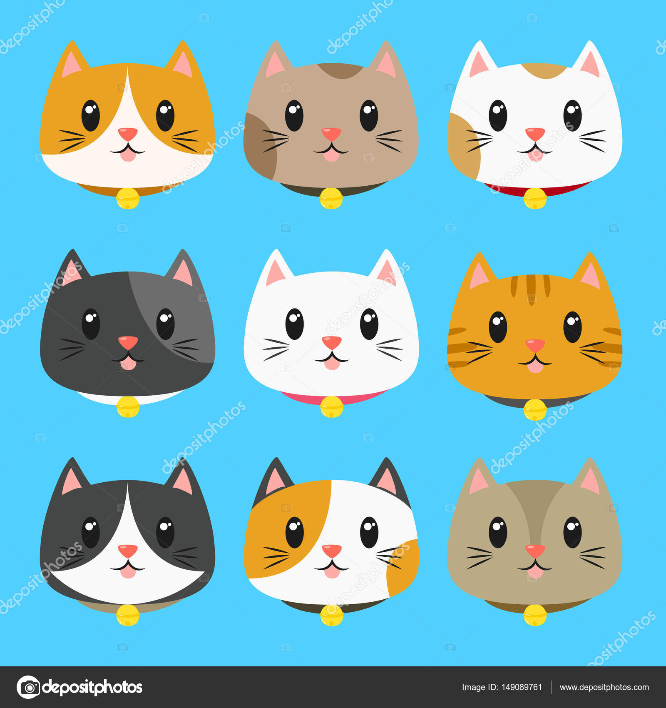 Kediler için yaka farklı