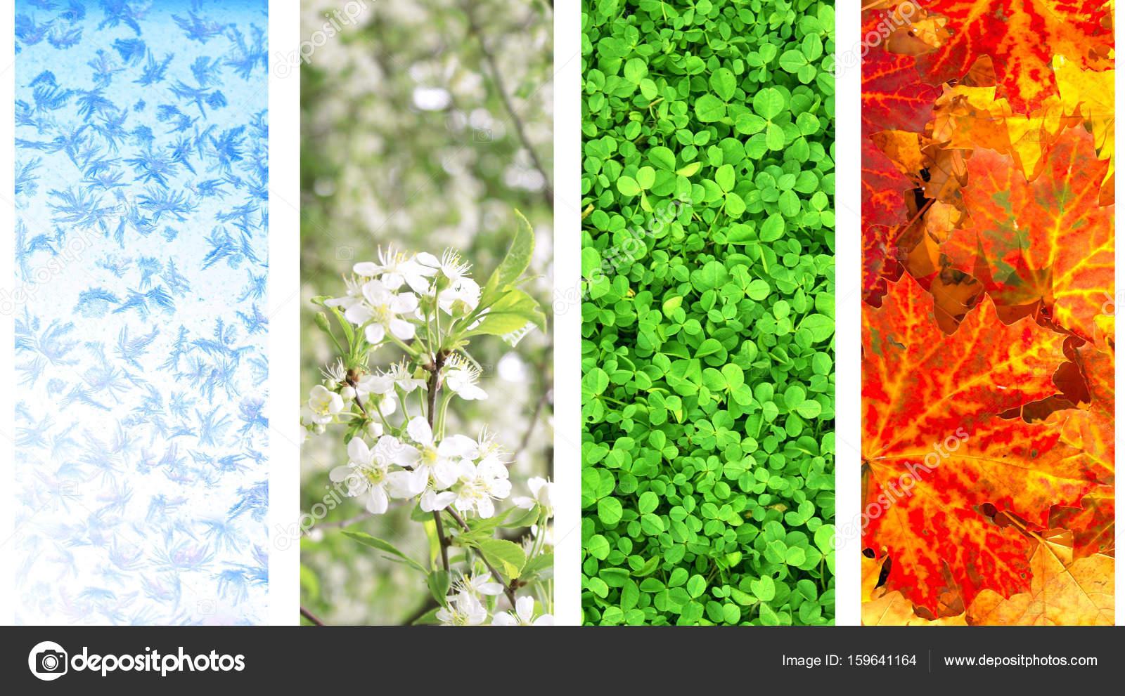 Quatre saisons de l 39 ann e photographie frenta 159641164 - Saisons de l annee ...