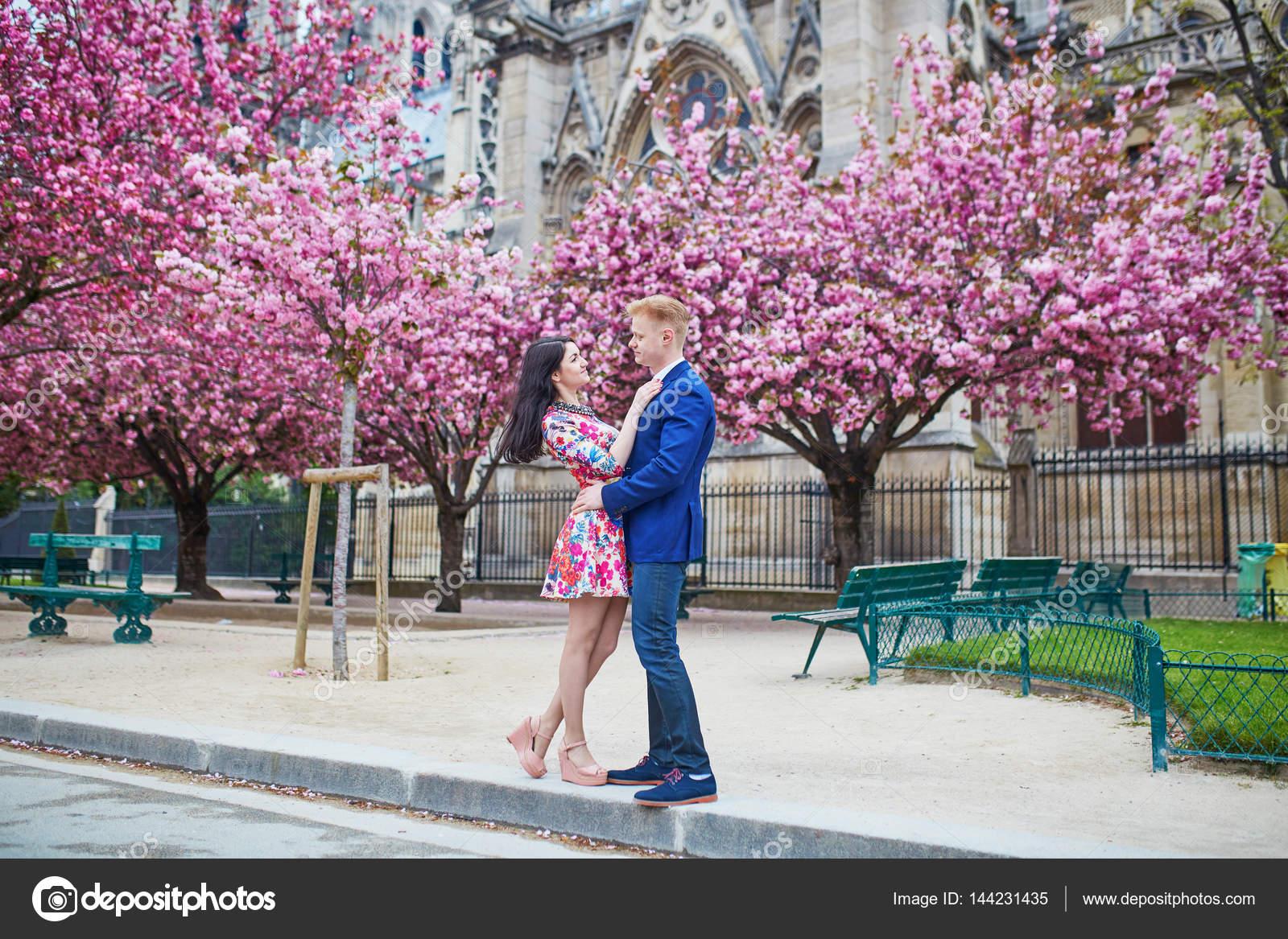 Wiśniowe kwiaty randki zaloguj się