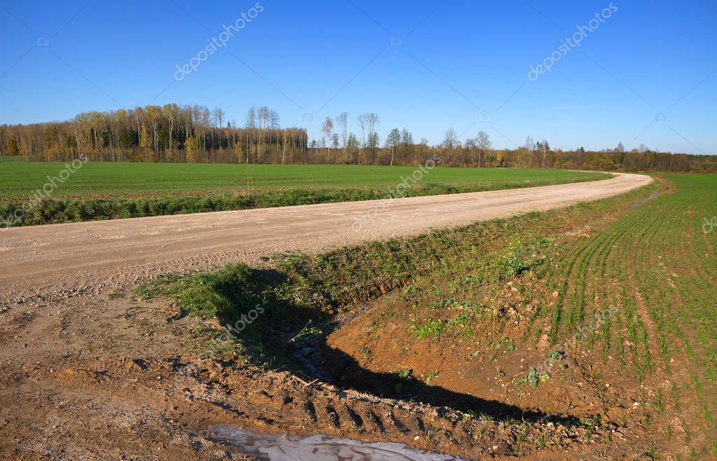 Country landscape with road.