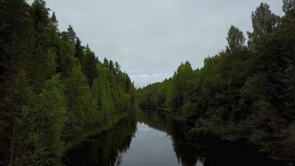 Lesní stromy a řeka shora. Krásný let přes řeku. Krásná Karelia je místem tisíců jezer a zelených lesů. Rusko, jezero Ladoga