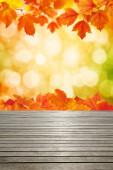Struktura dřeva a podzimní listy