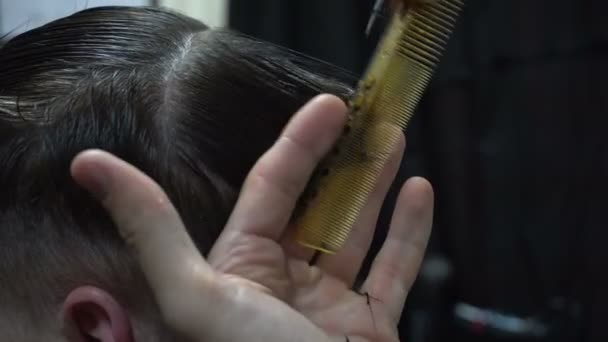 Man getting a haircut by a hairdresser