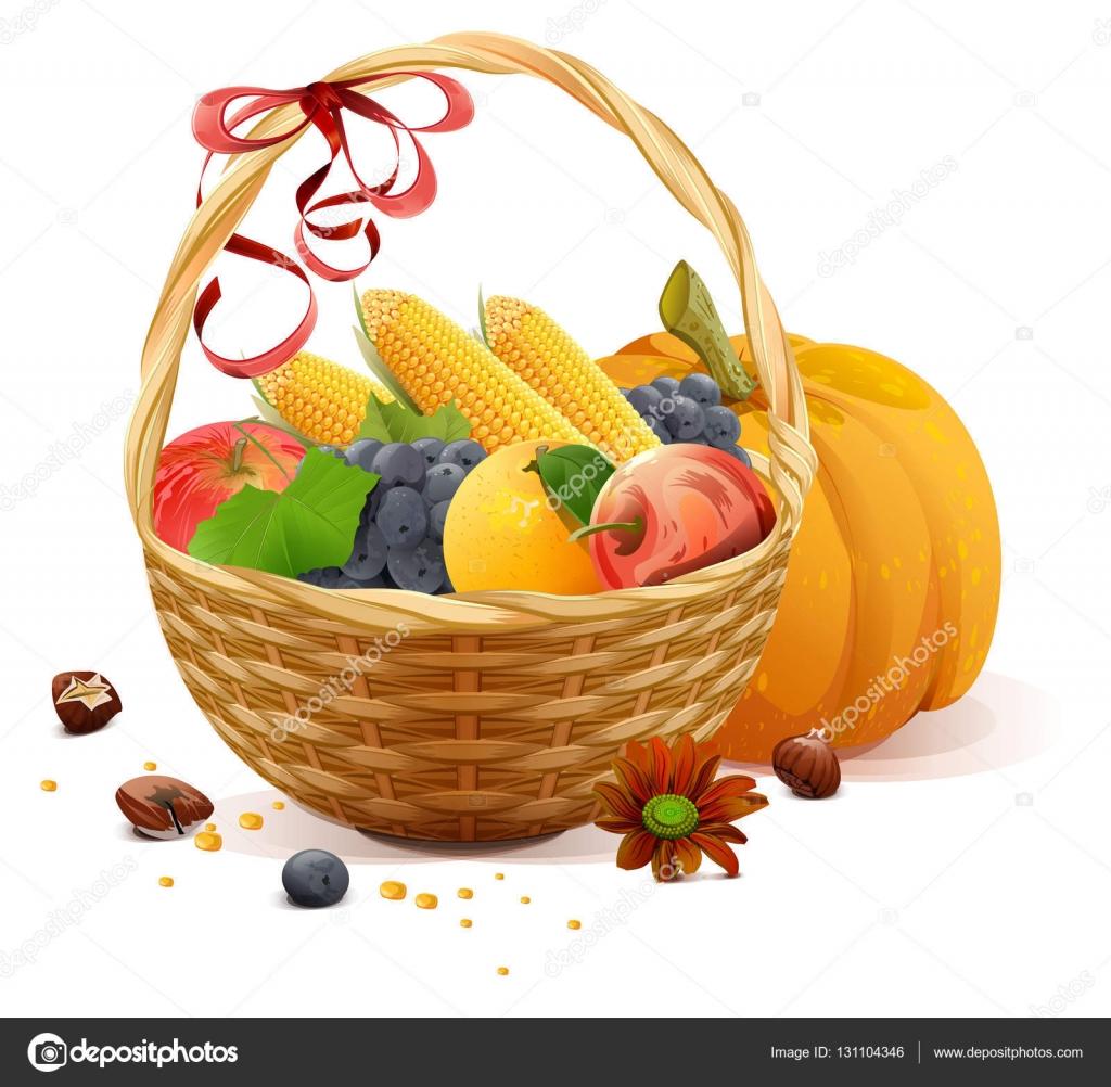 Fruits et l gumes dans le panier en osier riche r colte for Ou trouver des paniers en osier