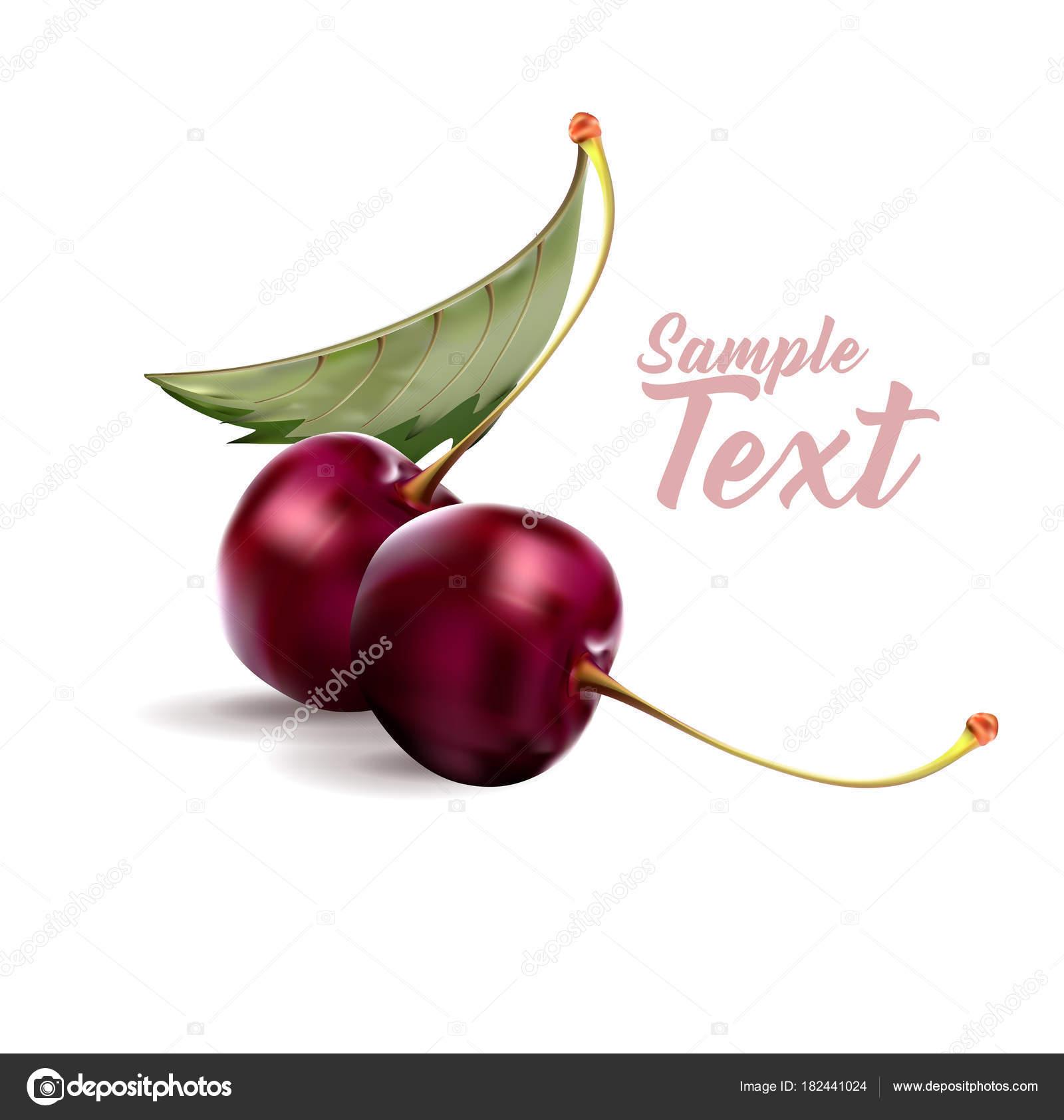 桜甘い果実3 D ベクトルのアイコンを設定しますリアルなイラスト