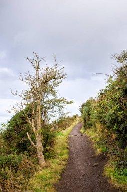 road uphill, Holyrood park, Edinburgh