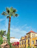 Street view of Sevilla
