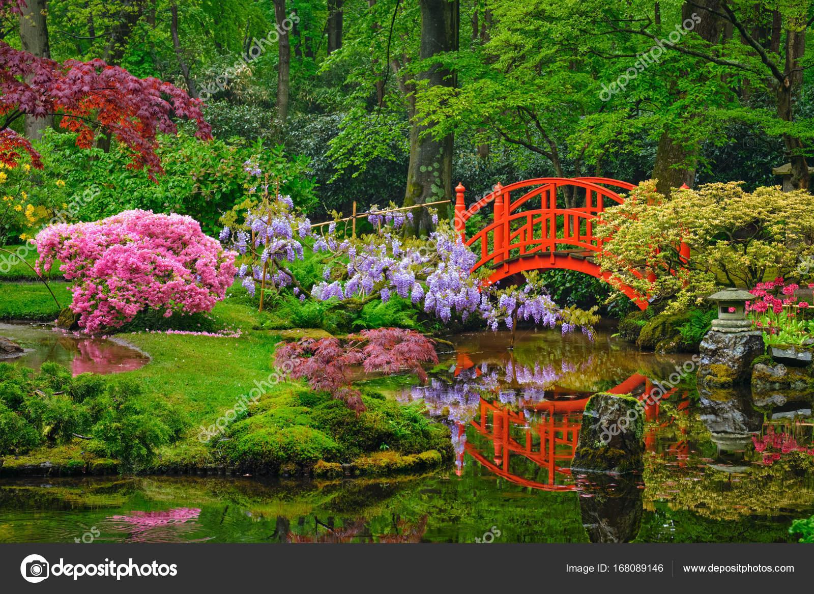 jardin japonais parc clingendael la haye pays bas photographie dmitryrukhlenko 168089146. Black Bedroom Furniture Sets. Home Design Ideas