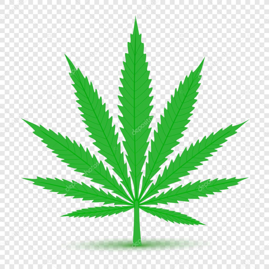 Cannabis icon transparent background